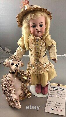 14.5 Antique German Bisque Head Santa Doll! S & H 1249! Elegant! Rare! 17746